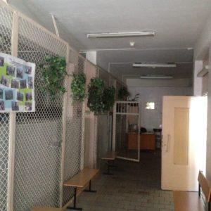 Стеклянный гардероб школа № 5555